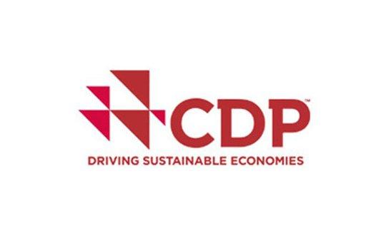 โครงการที่เน้นความสำคัญไปที่ประเด็นด้านสิ่งแวดล้อม CDP
