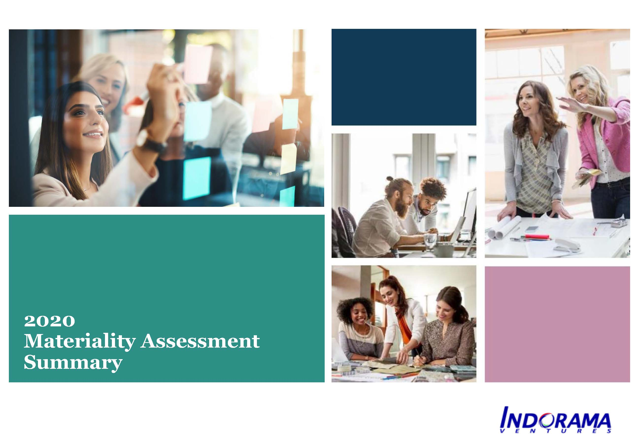 Materiality Assessment Summary 2020